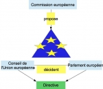 triangle-institutionnel.jpg
