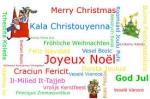 noel 2015,mouvement européen yvelines